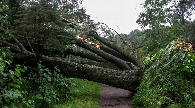 blachownia, tornado wblachowni