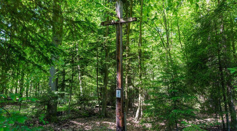 krzyż lemańskiego, blachownia, wręczyca wielka